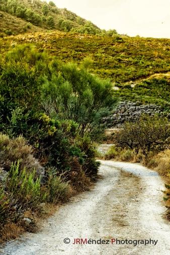 Caminos y veredas, entre un entorno natural magnífico, muy aptas para la práctica del senderismo, y el turismo rural, uno de los alicientes de futuro de esta comarca.